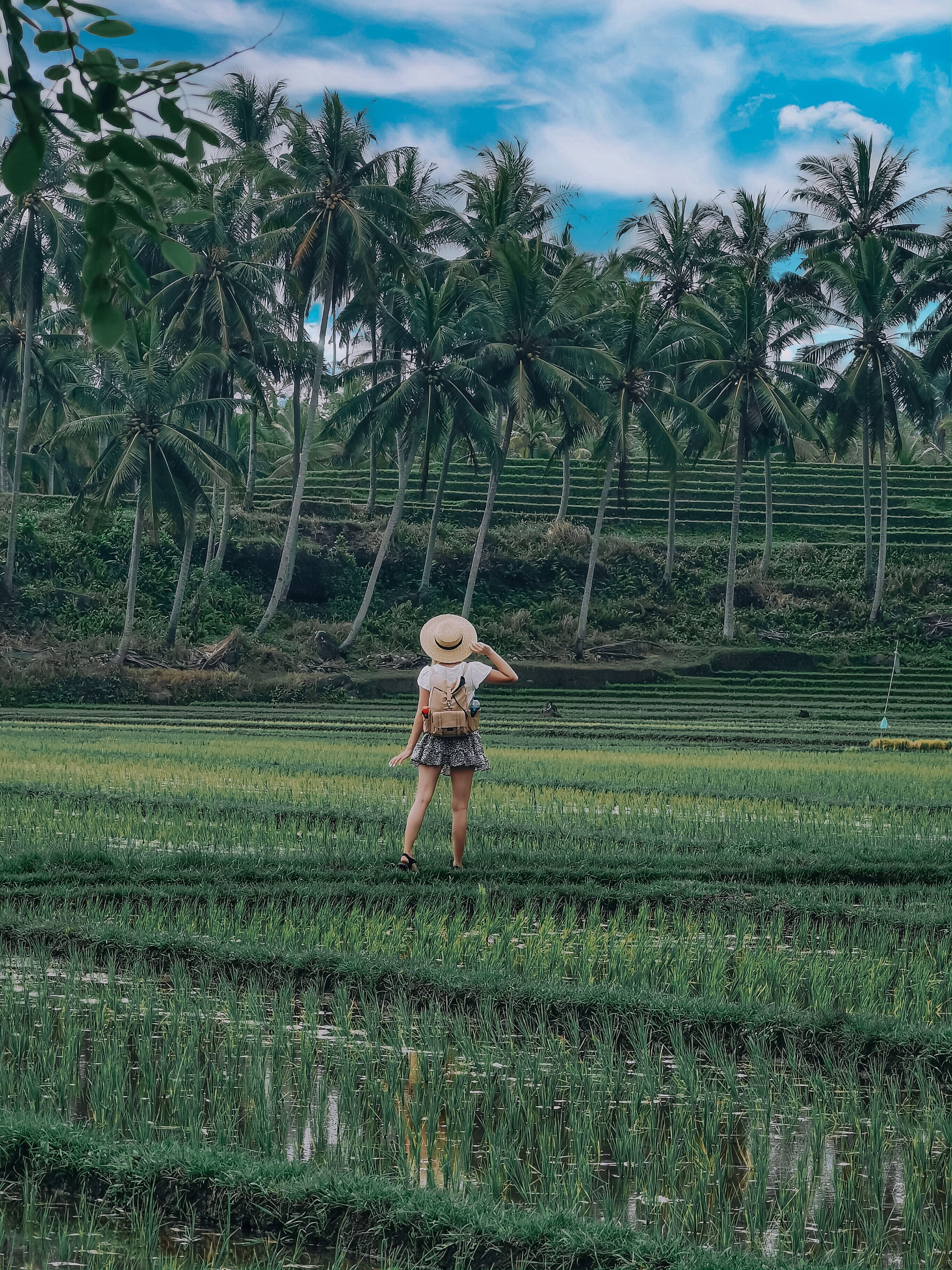 Daily Adventures in Ubud
